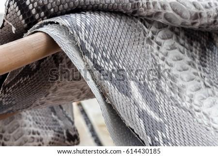 Reptile Snake Texture Closeup Fashion Zigzag Stock Photo (Edit Now