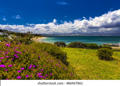 Republic of South Africa. Mossel Bay (Mosselbaai) in Western Cape Province. Botanical garden of the Bartolomeu Dias Museum Complex and Santos Beach in the background