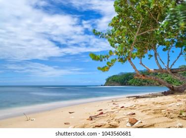 Republic of Trinidad and Tobago - Tobago island - Mt. Irvine bay - Tropical beach of Caribbean sea