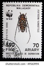 REPUBLICA MALAGASY - CIRCA 1988: A stamp printed in Malagasy (Madagascar) shows beetle  Stellognata maculata, circa 1988