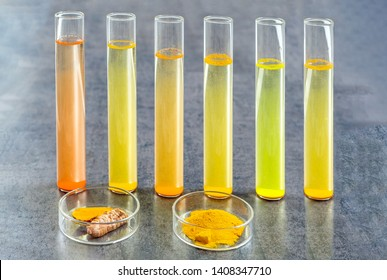 Resaerch on Curcuma. test tube with mater and curcuma with turmeric powder and turmeric root on slate background
