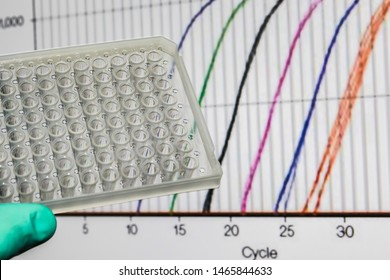 Research method real-time PCR. 96-well plate on the background of amplification curves.