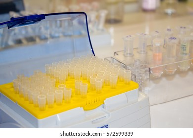 research samples in the lab