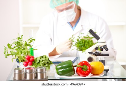 Researcher with GMO plants. Genetically modified organism or GEO here transgenic plant is an plant whose genetic material has been altered using genetic engineering techniques. Focus is on plants.