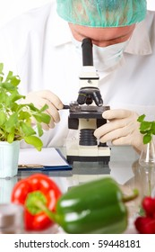 Researcher holding up a GMO vegetable. Genetically modified organism or GEO here transgenic plant is an plant whose genetic material has been altered using genetic engineering techniques