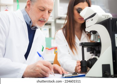 Researchers at work in a laboratory