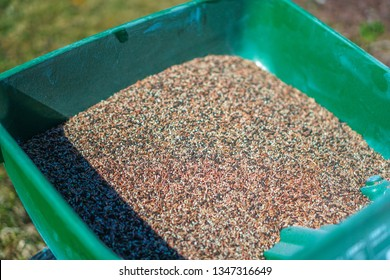 Reseeding lawns using seeds and a turf spreader