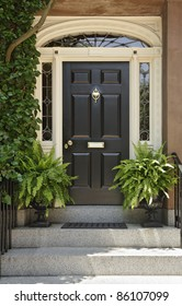 Residence front entrance with elegant designs and decorative plants. Vertical shot.