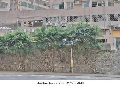 a residential buildings at Bonham Road hk