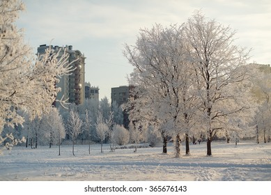 Residential buildings by the lake in nature in St. Petersburg, Russia