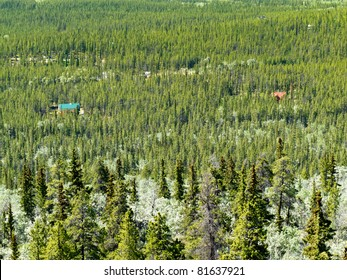 Residential buildings hidden in boreal forest of Yukon Territory, Canada.