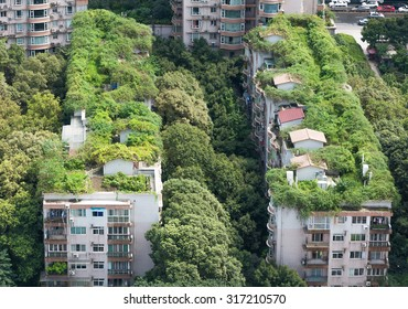 Residential buildings surrounded by trees and vegetation in Chengdu, Sichuan, China