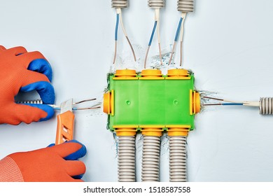 Residential Electrical Services Installation Plastic Junction Stock Photo  (Edit Now) 1518587558
