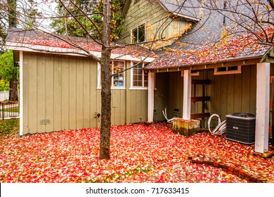 Residential home with garden backyard at autumn rainy day. Fallen yellow and red autumn leaves on the wet pavement.