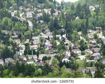Residential homes nested on a hillside with a street running through them.