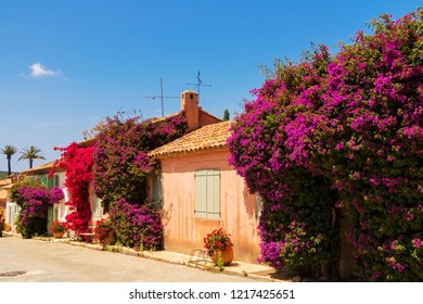Residential House in South France with beautiful flowers at Doorway