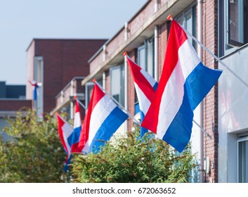 residential neighborhood with dutch flags hanging outside during a national holiday