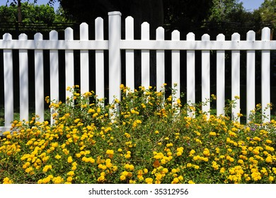Residential white picket fence with yellow flower accents