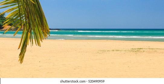 Resort beach in Egypt, on the coast.