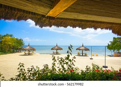 Resort beach umbrellas on a sunny day in paradise, Bohol, Philippines