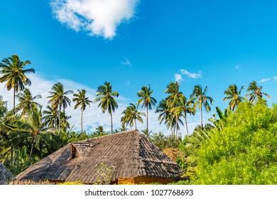 Resort of Zanzibar Island in Zanzibar, Tanzania.