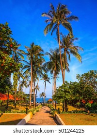 Rest of the Andaman Sea. Popular resort on the island of Koh Samui. Walkway to the sea surrounded by palm trees
