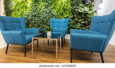Rest area at the front desk of the modern office, comfortable sofas and green plants