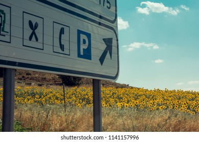 Rest area sign on the highway - Take a break on the road signpost - Bright and beautiful sunflowers field on the background - Driving on holidays, road safety