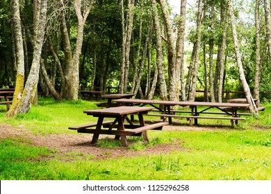 rest place site in park  with picnic table