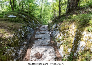 """The Rest of the Roman Road """"Via Norica"""", near Villach in Austria,  which were built more than 2000 Years ago by the Romans. Over hundrets of Years deep Cart Ruts have been cut into the rocky Terrain."""