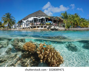 Restaurant on the sea shore with coral and fish underwater, split view above and below water surface, Rangiroa, Tuamotus, Pacific ocean, French Polynesia