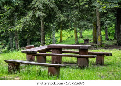 a resting area in the forest, a table and benches made of wood.