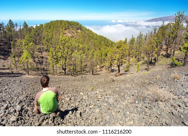 Resting man watching a landscape with endemic pines Pinus canariensis in the island of La Palma, Canary Islands, Spain