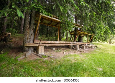A resting place with bench and roof, near an old fir forest