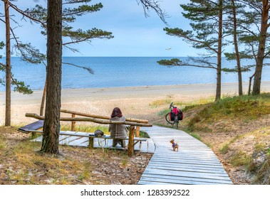 Resting point at sandy beach and pine forest dunes in Jurmala - famous tourist resort and recreational place in Latvia, EC