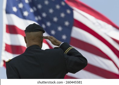 Ret. Milton S. Herring saluting U.S. flag, Los Angeles National Cemetery Annual Memorial Event, May 26, 2014, California, USA, 05.26.2014
