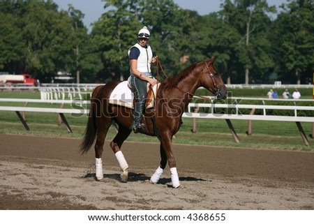 Retired Kentucky Derby Winner Funny Cide Stock Photo Edit Now