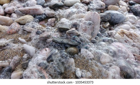 A retreating wave leaves foam and bubbles on pebbles on a beach