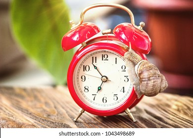 Retro alarm clock and a slow snail on it. Time does not wait concept. Time management concept. Land snail on an old desktop watch. Red alarm clock shows seven o clock, 6:55 o'clock 7 am 7 pm.