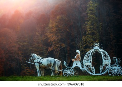 Retro cabman in wig sitting in vintage carriage of cinderella with white horses in green deep forest outdoor on natural background, horizontal picture