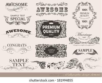 Retro floral calligraphic design elements and page decoration