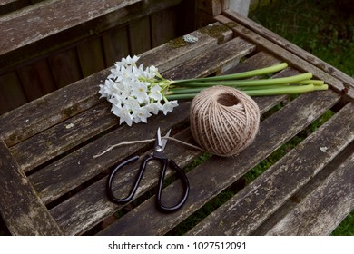 Retro flower scissors cutting garden twine, next to a bunch of white narcissi flowers on a wooden bench