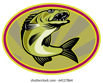 retro illustration of a walleye fish jumping set inside oval ellipse with sunburst in background