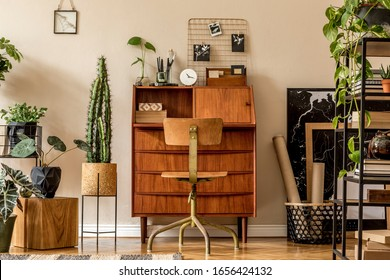 Retro interior design of art workshop room with wooden vintage bureau and chair, shelf plants, cacti, books, photos and elegant personal accessories. Stylish vintage home decor. Beige wall. Template.