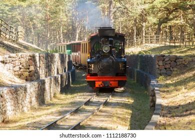 A retro narrow gauge train runs through a green park in Ventspils, Latvia