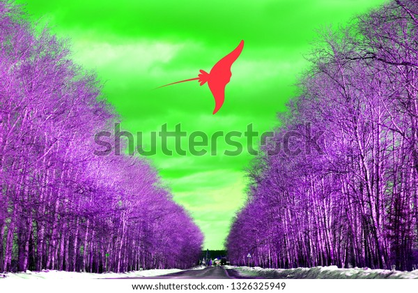 Retro photo art landscape of trees along the road and flying down a ramp