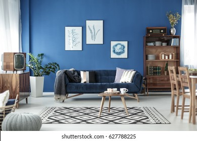 Living Room Blue Wall Images Stock Photos Vectors Shutterstock