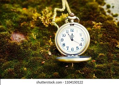 retro style gold pocket watch on bemoosed rock.