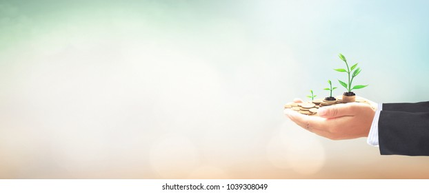 Return on investment concept: Businessman hands save holding stack of golden coin with small tree on blurred nature background