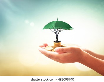 Return on investment concept: Human hands holding stacks of coins and green umbrella tree on blurred nature background